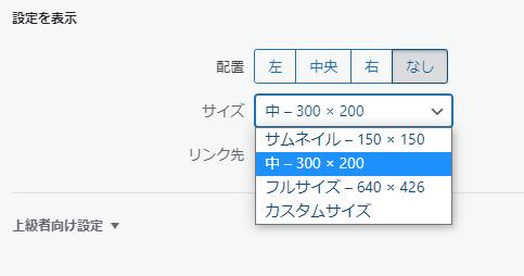 WordPress picture size